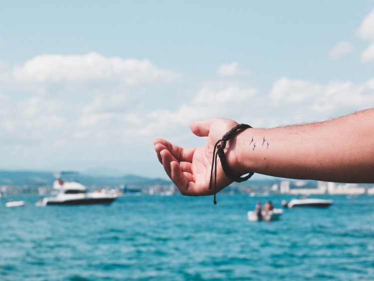 libertad pajaros mar